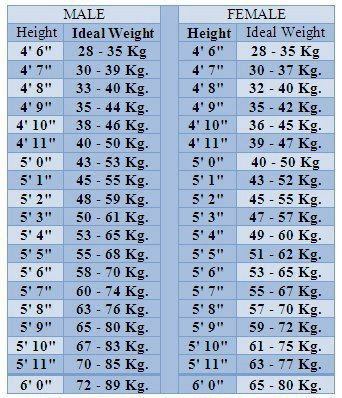 Ideal Height And Weight Chart Pow Salud Studio