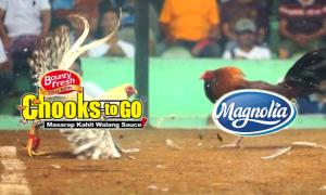 Chooks to Go vs Magnolia Hotshots